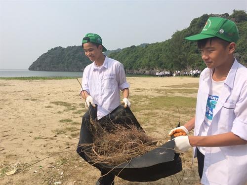 Cát Bà Island's youth clean up beaches