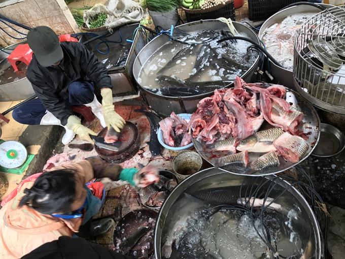 Hà Nội to step up food checks