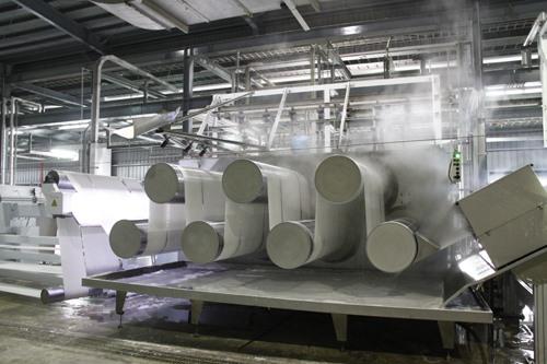 Polyester plant PVTex