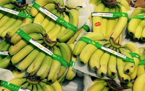 Vietnamese bananas on Japans supermarket shelves