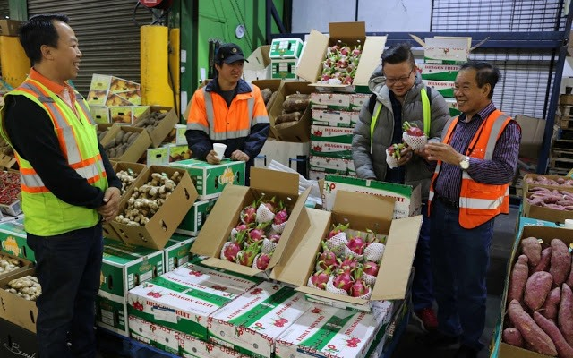 VN dragon fruit wows Aussie consumers