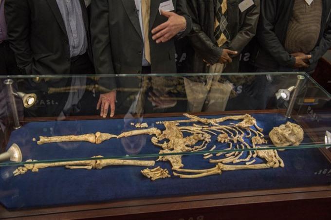 Little Foot skeleton goes on display in S.Africa