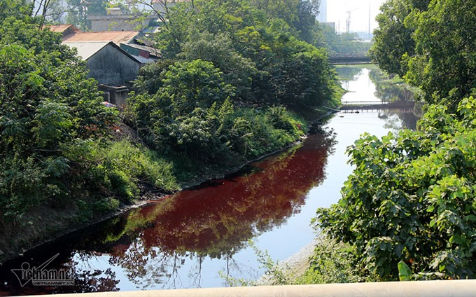 Units fined for environmental pollution