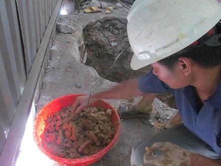 Quảng Bình resident finds 200 skulls in garden