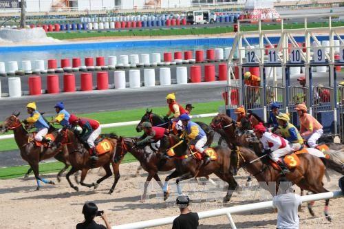 Đại Nam racecourse inaugurated in Bình Dương Province