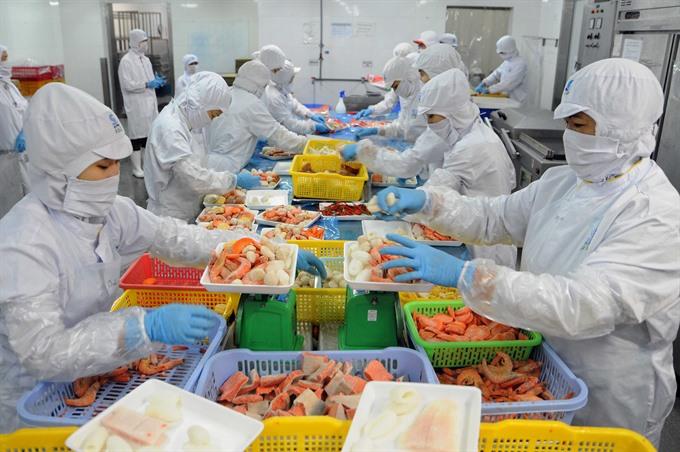 Shrimp exports earn 1.56 billion in H1