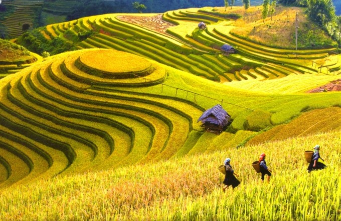 Việt Nam named among 20 most beautiful countries