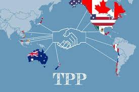 TPP nations achieve progress toward new free trade deal