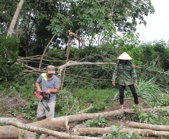 Unseasonal rain tornado damage farms destroy livelihoods