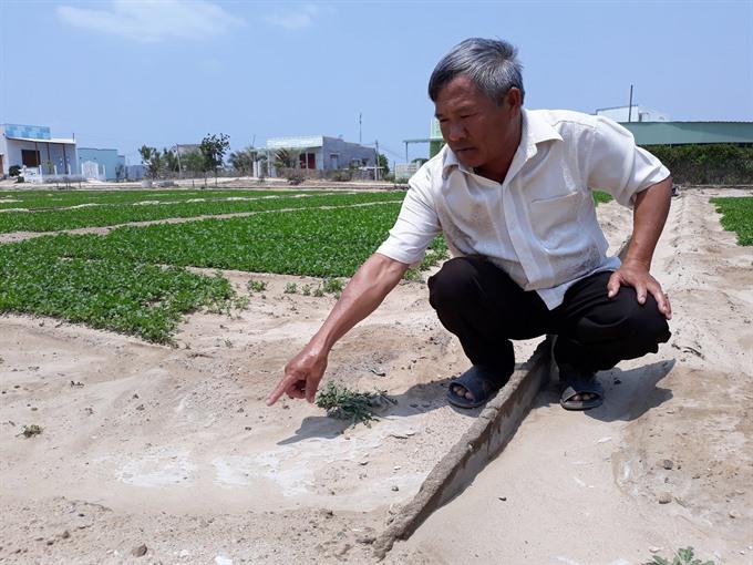 Saline intrusion attacks Ninh Thuận