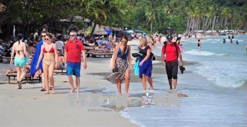 Beach tours popular this summer: travel firms