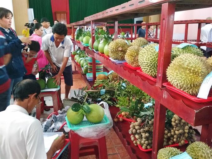 Bến Tre brands unique local fruits