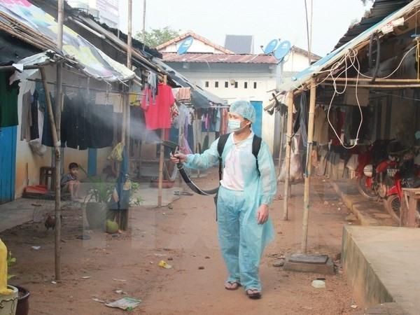 Dengue fever may make a comeback