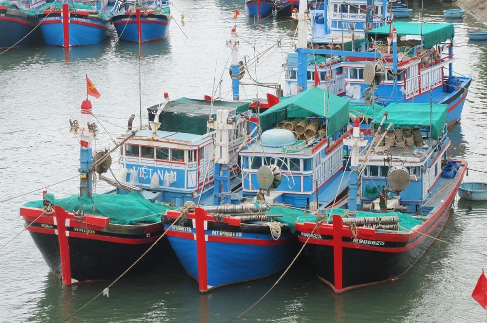 Ninh Thuận develops marine economy
