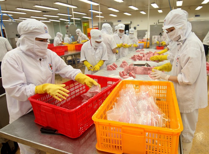 VN needs strategy to promote private firms