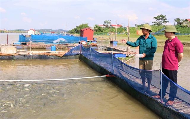 Bắc Ninh pursues sustainablecage fish farming