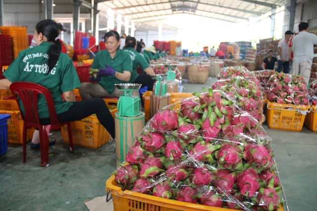 Almost 500m invested in farm product processing industry  in H1