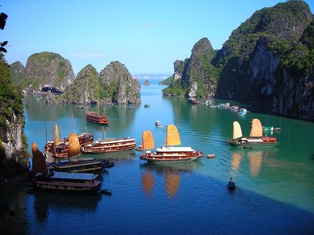 Ministry tells Quảng Ninh to handle environmental violations in Hạ Long Bay