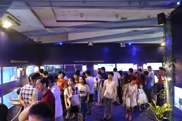 Fourth Ornamental Fish Festival kicks off in HCM City