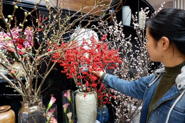 Expensive imported flowers a hot item for Tết