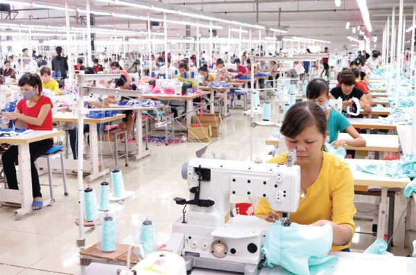 Material autonomy key for Việt Nam to fully exploiting EVFTA