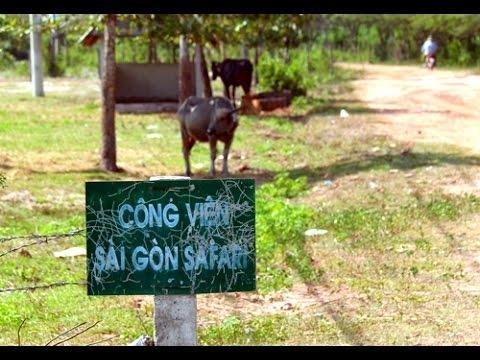 HCMC helps 500m safari park