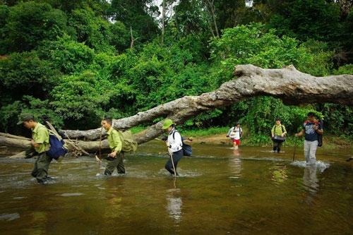 Gia Lai opposes hydro power plant