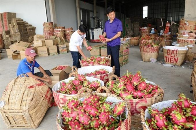 S Korea toughens pesticide rules