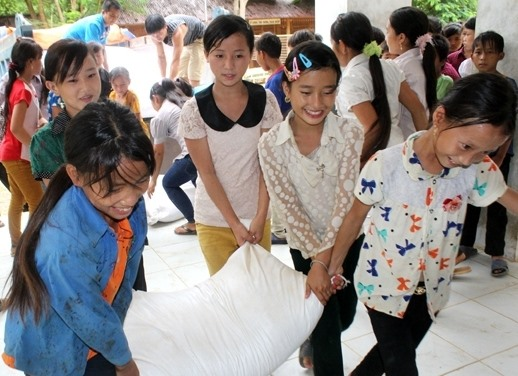 Government provides rice for Nghệ Ans farmers