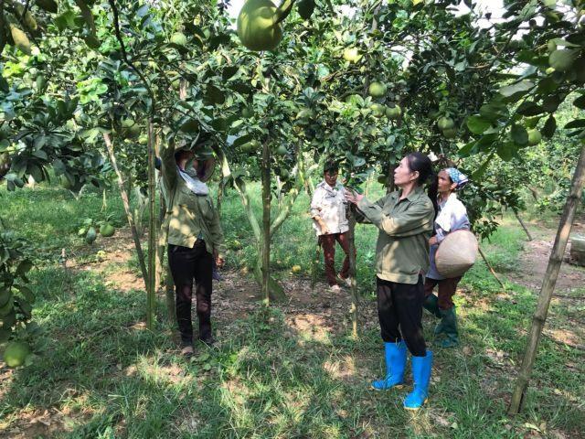 Woman turns barren land into organic farm