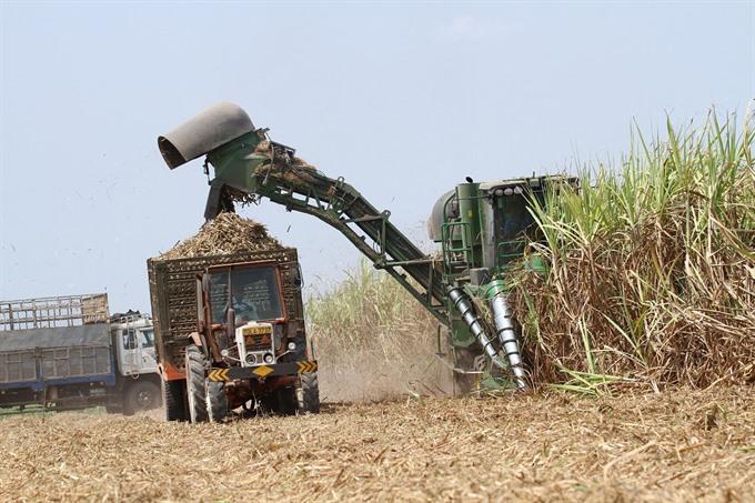 Vietnam sugar producer plans 600m Singapore listing