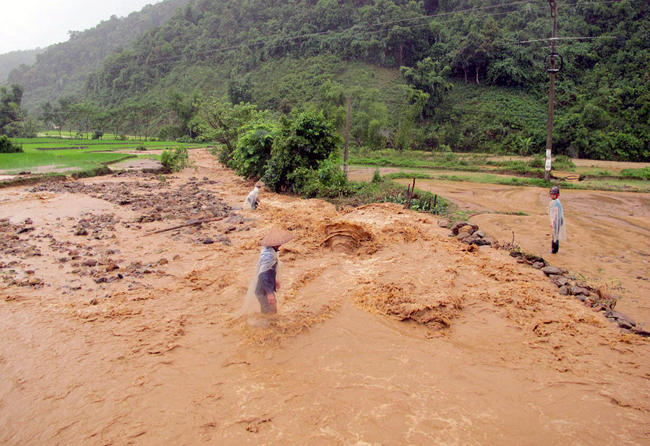 Typhoon causes heavy floods in northern provinces