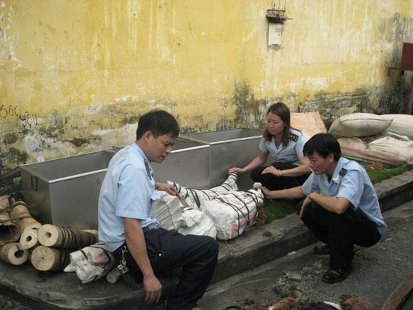 Customs officials seize 2.2 tonnes of elephant tusks