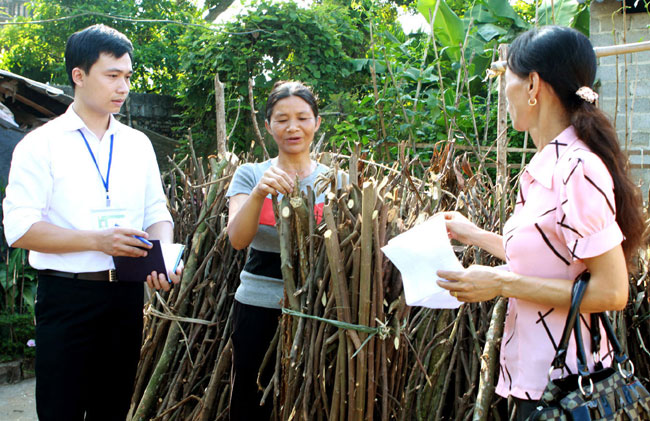 VN to simplify insurance procedures