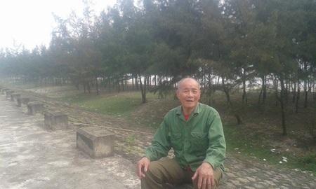 Old man guards casuarina trees