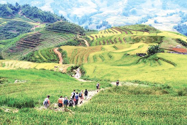Lao Cai braces for 'tourism year