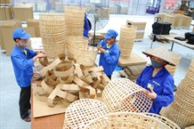VN to cut costs rules for firms