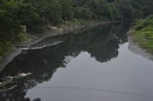 Management of river environment to be improved