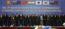 RCEP ministers celebrate progress
