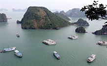Hạ Long Bays water under threats