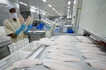 Anti-dumping duties on Vietnamese fish too high
