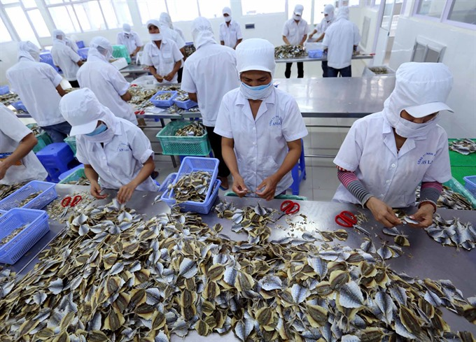 Fish products processed at An Lạc Seafood Company in southern Trà Vinh Province for export to a number of markets, including the European Union (EU). The trade deal between Việt Nam and the EU is creating a number of opportunities to expand exports. – VNA/VNS Photo Vũ Sinh