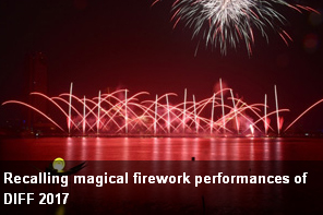 http://vietnamnews.vn/brand-info/378719/recalling-magical-firework-performances-of-diff-2017.html#f0Zuq0iCVCtSR3O2.97