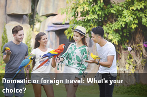 http://vietnamnews.vn/brand-info/381715/domestic-or-foreign-travel-whats-your-choice.html#5SbdLVERr7Lc0p2S.97