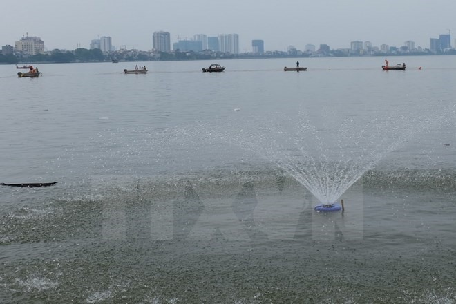 Hà Nội increases oxygen in West Lake to save fish