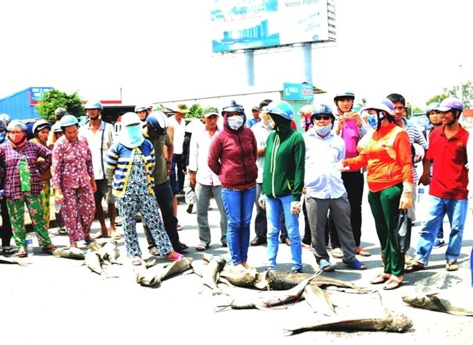 Authorities investigate fish death amidst protest