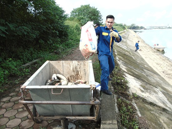 Water pollution dismissed as reason for fish deaths