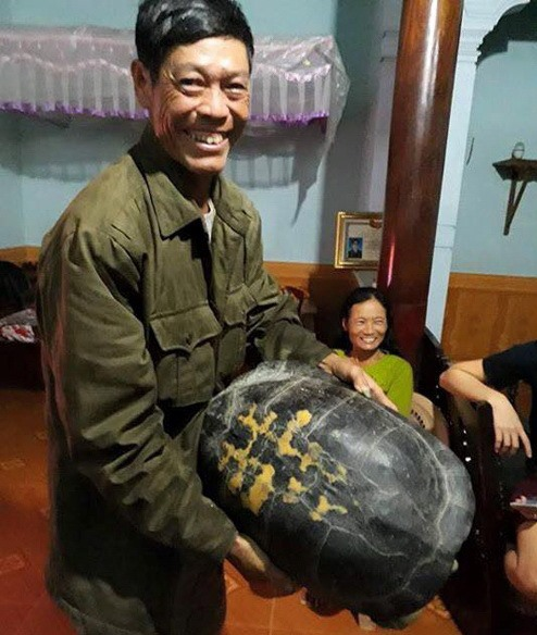 Rural residents save lost turtles from avaricious meat traders