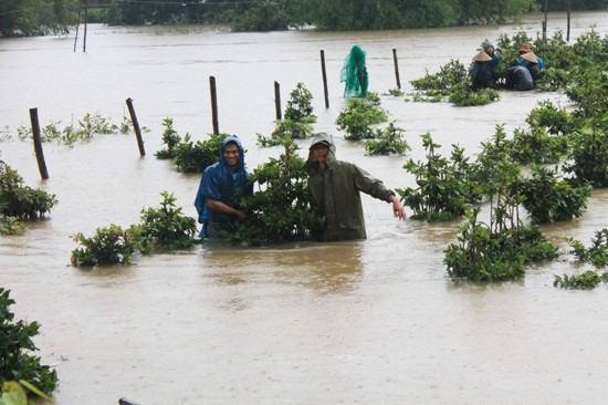 Floods hit central provinces