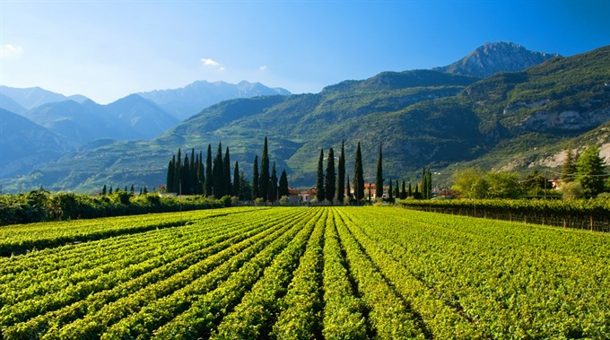 Italian enterprises seek investment opportunities in VN